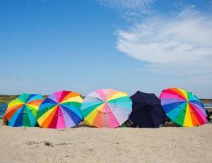 The umbrella lineup.